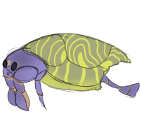 Turtle-Sheller